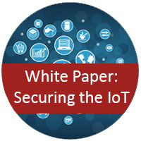 White Paper: Securing the IoT